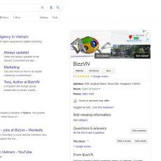 Bizzvn on Google